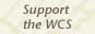 Support the WCS